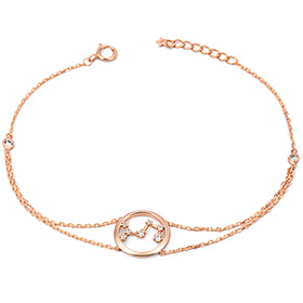 14k / 18k luck constellation bracelet [12 species]