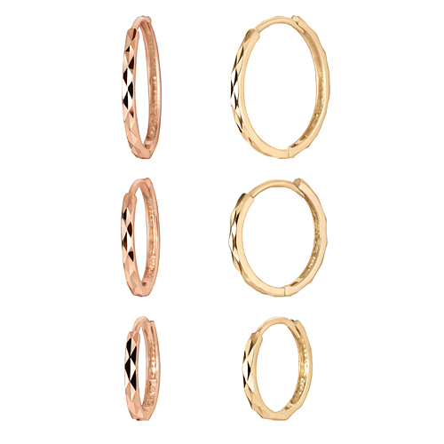 14K Circle cutting earring [3] [overnightdelivery]